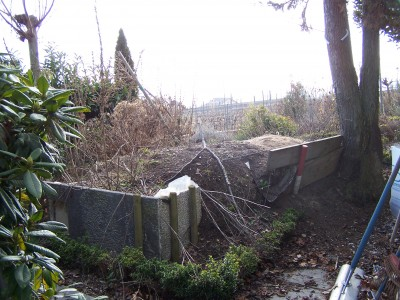 Before: neglected and overgrown
