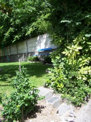 Before: long, narrow garden with wall