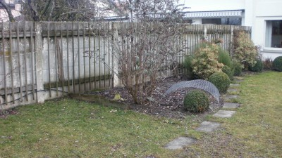 A grey, drab garden in need of some magic